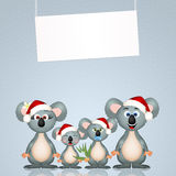 Koalas at Christmas Royalty Free Stock Photos