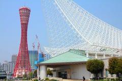 Kobe Fotografia Stock