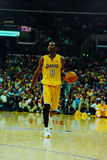 Kobe Bryant Los Angeles Lakers Stockfotografie