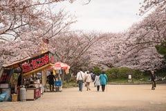 KOBE JAPONIA KWIECIEŃ 3 Czereśniowego okwitnięcia świętowanie Zdjęcie Royalty Free