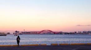 Kobe schronienia ziemia Zdjęcia Royalty Free