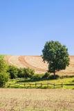 Kobern-Gondorf Stock Images