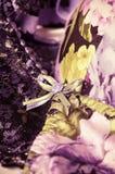 Kobiecy koronkowy underclothes tło Fotografia Stock