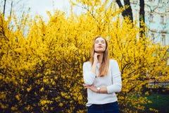 Kobiet agains possing żółty kwitnący drzewo Mimozy drzewa kwitnienie Fotografia Royalty Free