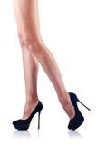 Kobiet długie nogi Fotografia Royalty Free