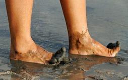 Kobiet nogi. Zdjęcia Royalty Free