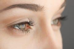 Kobiet oczu zakończenie Obraz Royalty Free