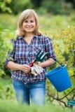 Kobiet ogrodniczy narzędzia obraz stock