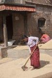 Kobiet pracować Obraz Stock