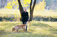 kobiet psi potomstwa zdjęcia royalty free