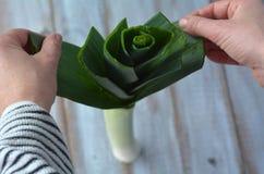 Kobiet ręki przygotowywają leek warzywa fotografia royalty free