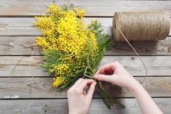 Kobiet ręki robią bukietowi mimozy bandaże splatają i ogrodnictwo nożyce na nieociosanym drewnianym stole Fotografia Royalty Free
