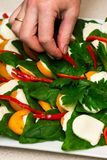 Kobiet ręki robią zielonej sałatki z szpinaka jajecznym czerwonym pieprzem, pomidorem i serem, na bielu talerzu na popielatym tab fotografia royalty free