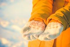 Kobiet ręki w zim rękawiczek zimy sezonu modzie Obraz Royalty Free