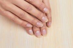 Kobiet ręki z okrzesanymi gwoździami Obraz Royalty Free