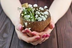 Kobiet ręki z piękne menchie matującym manicure'em obrazy royalty free