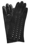 Kobiet rękawiczki czarny rzemienne Fotografia Stock