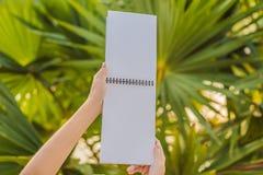 Kobiet r?ki w tropikalnym tle trzyma signboard, rysunkowy blok, papier, mockup zdjęcia royalty free