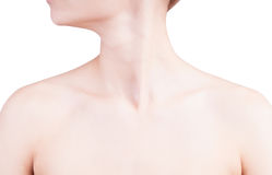 Kobiet ramiona szyja i zdjęcie royalty free