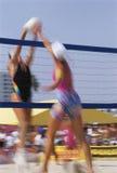 Kobiet Siatkówki Gracze Zdjęcie Stock