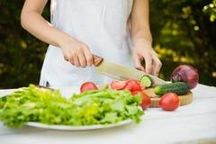 Kobiet szefowie kuchni siekający warzywa Obraz Royalty Free