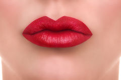 Kobiet warg Czerwony buziak Obraz Royalty Free