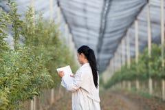 Kobieta agronom w sadzie Obrazy Stock