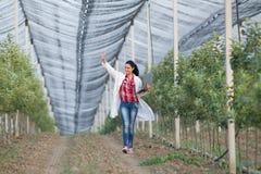 Kobieta agronom w sadzie Zdjęcia Royalty Free