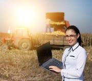 Kobieta agronom z laptopem w kukurydzanym polu Zdjęcie Stock
