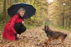 Kobieta bawić się z jej psem i kijem Zdjęcia Stock