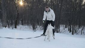 Kobieta bawić się z psem w zima parku zbiory