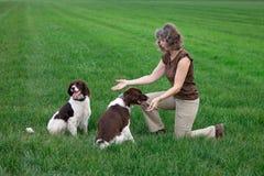 Kobieta bawić się z zrelaksowanymi szczęśliwymi psami fotografia royalty free