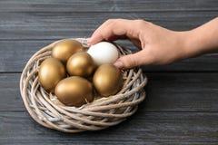 Kobieta bierze jajku od gniazdeczka z złotem ones zdjęcia stock