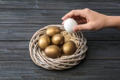 Kobieta bierze jajku od gniazdeczka z złotem ones obraz royalty free