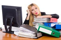 Kobieta bizneswomanu pracować odizolowywam na bielu Zdjęcie Stock