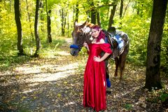 Kobieta blisko konia Zdjęcie Stock