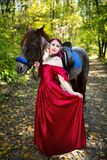 Kobieta blisko konia Obrazy Stock