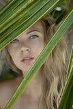 Kobieta blisko palmy Obrazy Stock