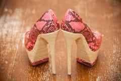 Kobieta butów różowe szpilki stylizujący skóra deseniowy bezszwowy wąż Fotografia Stock