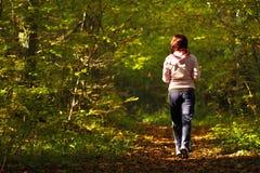 Kobieta chodzi przecinającego kraju ślad w jesień lesie Obraz Stock