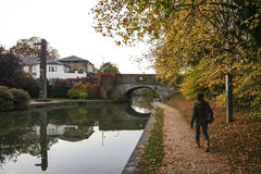 Kobieta chodzi uroczystego zrzeszeniowego kanałowego towpath berkhamsted uk obrazy royalty free