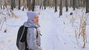 Kobieta chodzi w drewnach Podróżnik jest spacerem w brzoza lesie w miasto parku Dziewczyna chodzi w wieczór czasie z pięknym zbiory wideo