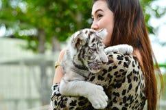Kobieta chwyta dziecka Bengal biały tygrys Obraz Stock