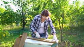 Kobieta cieśla przetwarza drewnianą deskę z metalu muśnięciem w ogródzie zdjęcie wideo