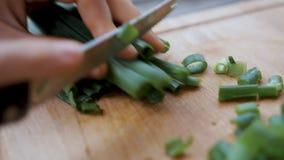 Kobieta ciie zielonej wiosny cebuli z nożem na drewnianej desce Kobieta wr?cza r?ni?te ?wie?e zielone cebule z no?em zako?czenie zbiory