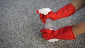 Kobieta czyści dywan z detergentem, w górę zdjęcie wideo