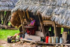 Kobieta czyści ryż Zdjęcie Royalty Free