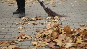 Kobieta czyści ulicę, zamiata spadać liście w parku, ciężka praca, niskie pensje zbiory