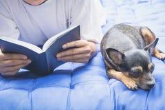Kobieta czyta książkę z sypialnym chihuahua psem obok kobiety obraz stock