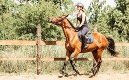 Kobieta dżokej trenuje jeździeckiego konia Sport aktywność zdjęcia royalty free